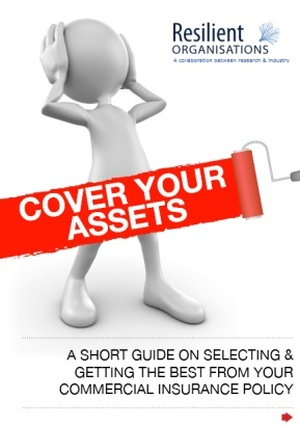 Cover_your_assets